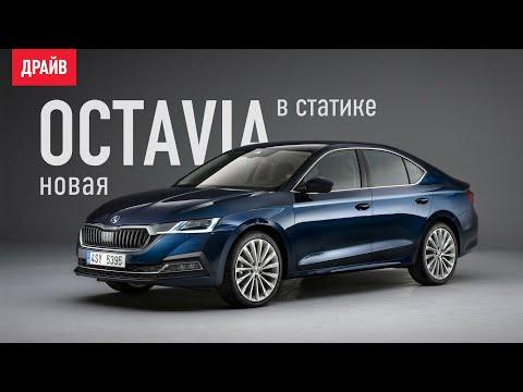 Skoda Octavia седьмого поколения в статике — репортаж Кирилла Бревдо