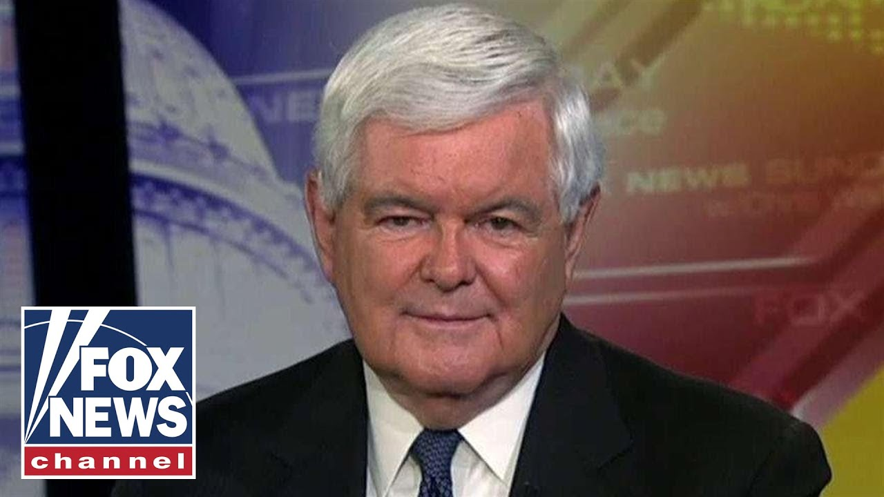 Gingrich on Obama's gerrymandering fight, Biden's campaign trail blunder