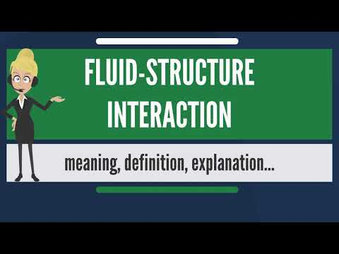 What is FLUID-STRUCTURE INTERACTION? What does FLUID-STRUCTURE INTERACTION mean?