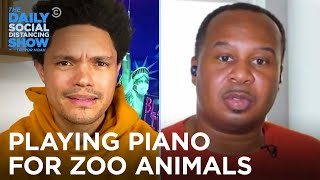 Zoo Hires a Pianist to Relax the Animals & Roy Wood Jr. Is Pissed | The Daily Social Distancing Show