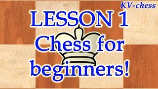 Chess for beginners.