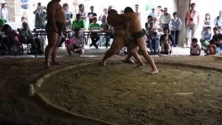6月23日におこなわれたわんぱく相撲小豆島場所に来賓としてやってき...