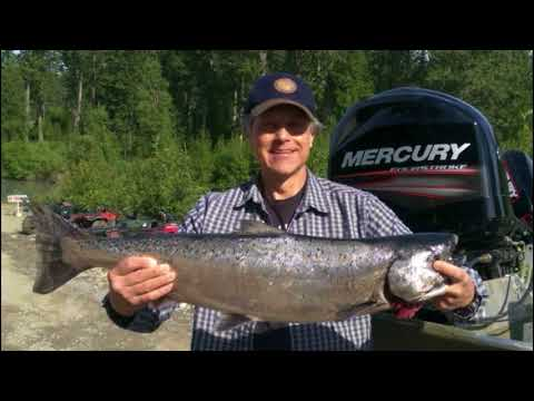 Deshka River Salmon fishing