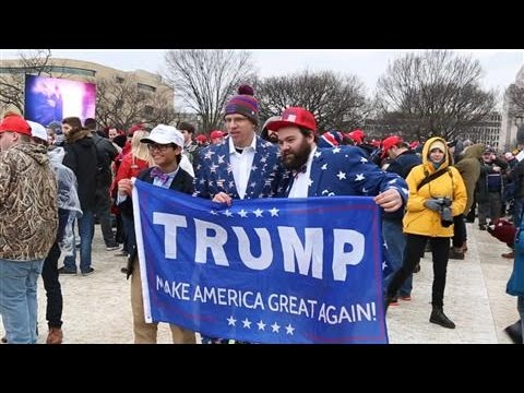 Spectators Watch Trump's Inauguration From the Mall