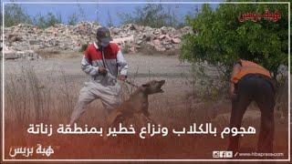 هجوم بالكلاب ونزاع خطير صباح اليوم بمنطقة زناتة