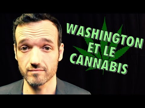 Le cannabis du président George Washington