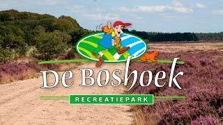 Kom vakantie vieren op de Veluwe | Recreatiepark de Boshoek