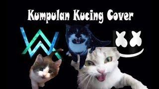Gambar cover Video Kompilasi Kucing Cover (Alan Walker Vs Marshmello)
