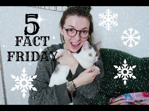 Five Fact Friday! New Job, Ethan & Travel