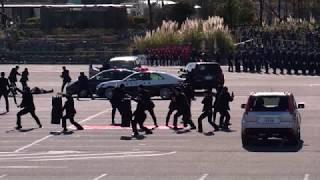 [4K] 平成31年 埼玉県 警察 年頭視閲式 警護訓練 thumbnail