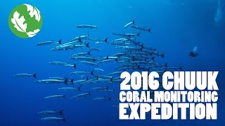 Chuuk Coral Expedition by TNC - July 2016