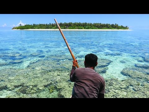 Indonesia ( travel & spearfishing!!!! )