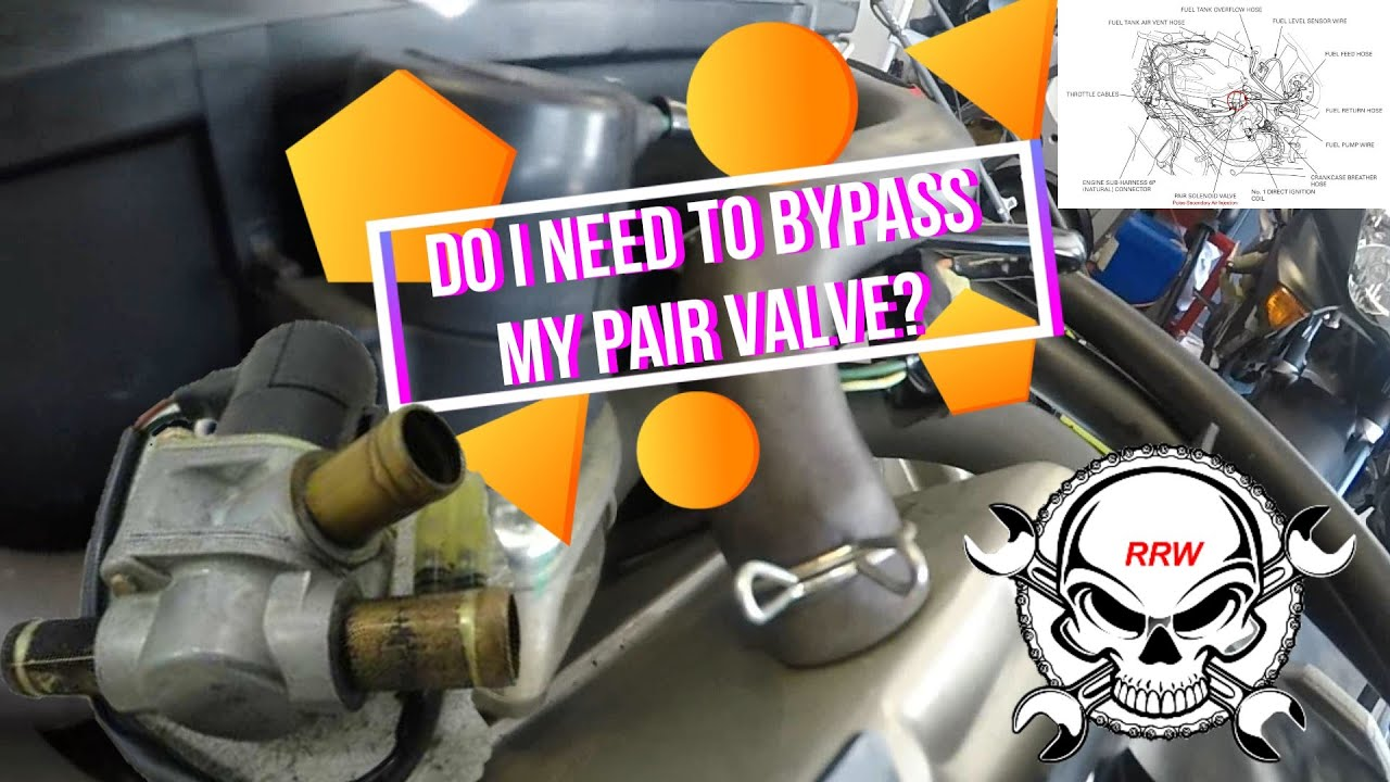 Download PAIR Valve Discussion & Bypass