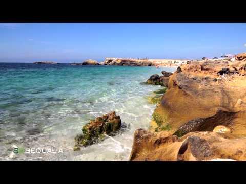Sardegna Centro Ovest: La spiaggia di Is Arutas (Oristano, Cabras)