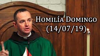 Homilía Domingo (14/07/19)