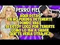 Shakira ft Nicky Jam -  Perro fiel (Letra) Mp3