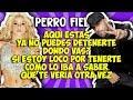 Shakira Ft Nicky Jam Perro Fiel Letra mp3