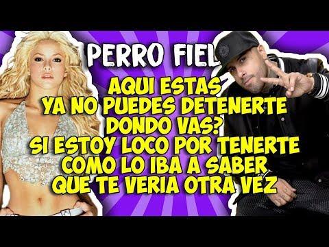 Shakira ft Nicky Jam -Perro fiel (Letra)