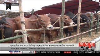 ক্রেতা বিক্রেতায় সরগরম রাজধানীর পশুর হাটগুলো | Cow Hat | Somoy TV