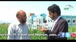 Hazara University focusing on the Research & Development in the fields of Plants & Human Genetics.
