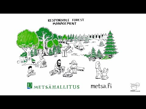 Responsible Forest Management - Forest management methods in Finnish state-owned forests