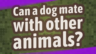 Can a dog mate with other animals?