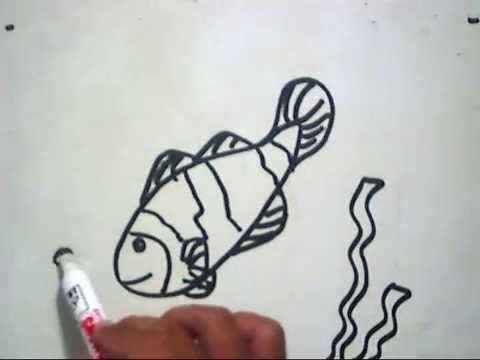 Cara Menggambar Ikan Badut How To Draw A Clown Fish Youtube