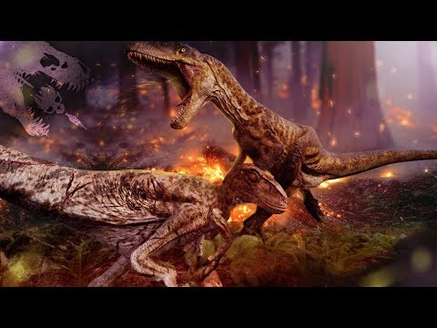 THE ANSWERS ARE HERE! - The Isle - Dinosaur Combat Update, Forest Fires, Future Updates - Gameplay