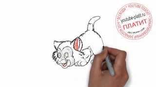 Нарисованные карандашом кошки  Как быстро нарисовать красивого черного котенка поэтапно простым кара