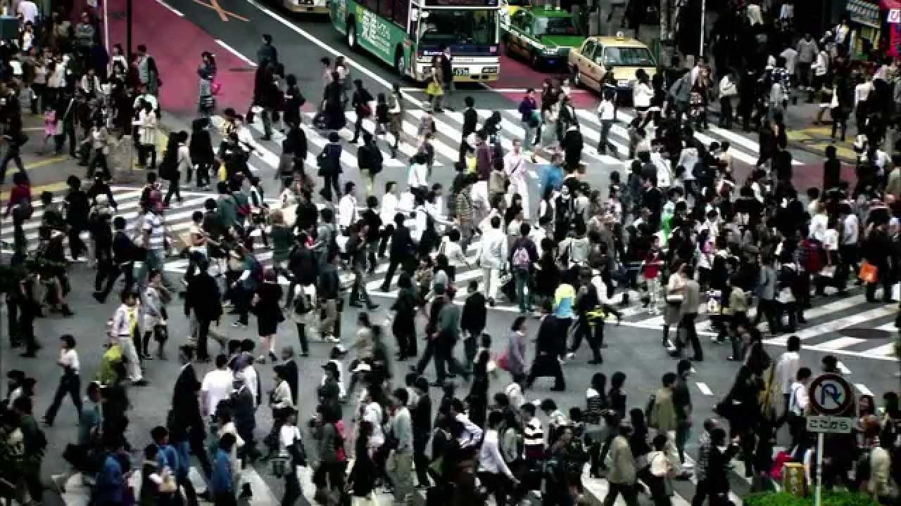 Human Harvest Official Trailer