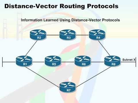 591 57 Routing Protocols 05 Distance Vector Routing Protocols