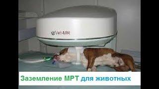 Заземление МРТ для животных,монтаж заземления,Киев,Оболонь
