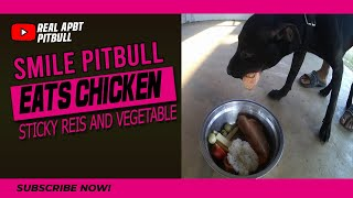 SMILE PITBULL EATS Chicken Sticky Reis and Vegetable (RAW FEED APBT) all you can eat