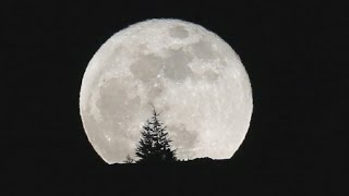 Supermoon, blue moon and lunar eclipse come January 31