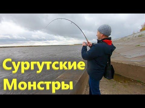 Рыбалка на Оби, набережная Сургут, сентябрь 2019