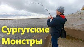 Рыбалка на Оби набережная Сургут сентябрь 2019