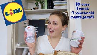 Voor 10 euro mijn weekboodschappen bij LIDL! | vegan on a budget #6|