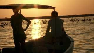 Yo Descubrí Yucatán musicalizado por Natalia Lafourcade (Turismo México)
