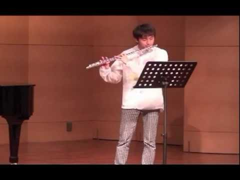 Flute play : Beethoven Romance Flute G Major