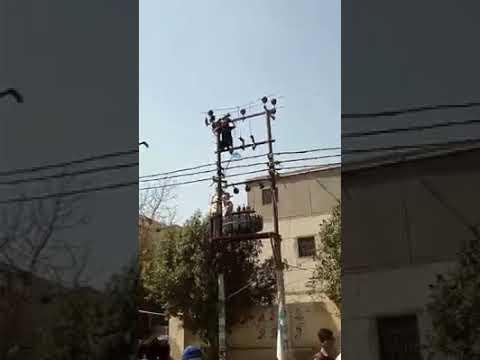 A man save life eagle in Karachi