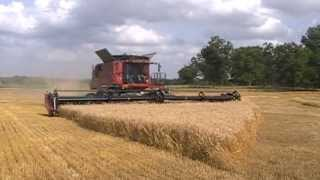 case ih 9230 axial flow combine and 2162 45 draper head