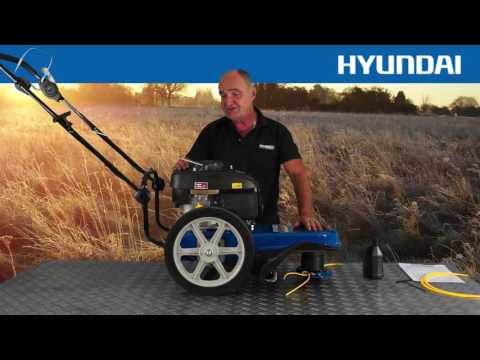 Hyundai Petrol Push Field Grass Trimmer Strimmer HYFT56 Out of the Box, Assembly & In Use