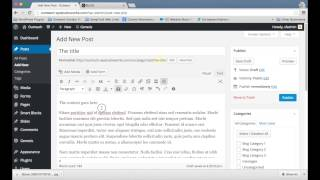 How to Add a New Post to a WordPress Website Blog