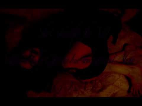 (Videoclip for VJ) Blood Cat Sex by G.I.A