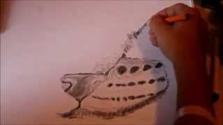 Speed drawing lynx face