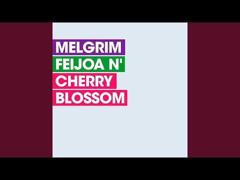 Feijoa N' Cherry Blossom