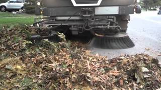 Ravo Street Sweeper Devouring Leaves