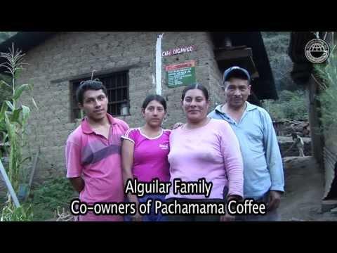 Peru - The Aguilar Organic Farm in Santa Teresa - COCLA Cooperative