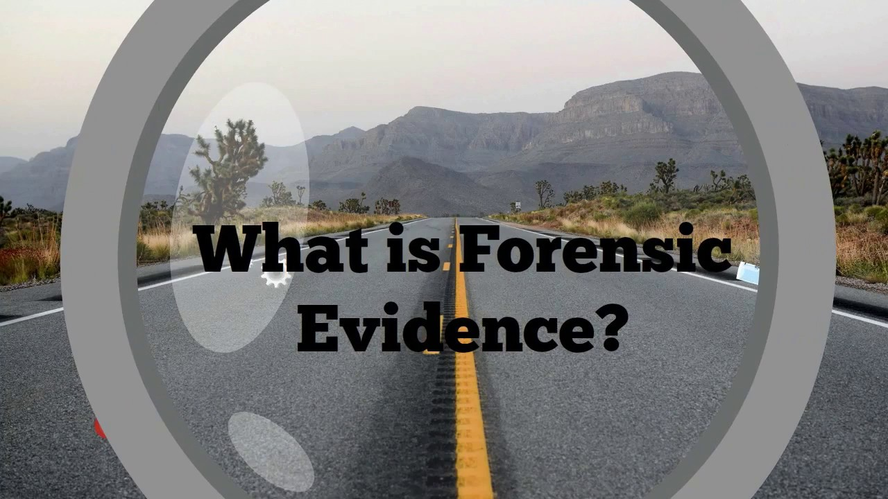 Forensic Investigations - PInow com