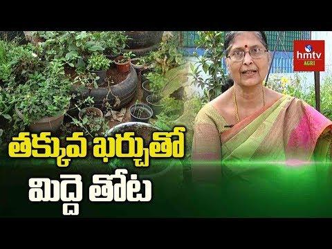 Kitchen Gardening Tips By Kousalya | Terrace Gardening | hmtv Agri